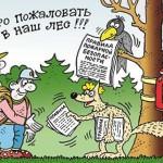 Добро пожаловать в лес